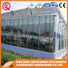 Serra di vetro del giardino della struttura d'acciaio della Multi-Portata