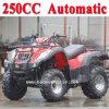 Nuevo ATV automático de la calle automática de 250cc ATV (MC-356)