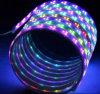 Luz de tira flexible de la cinta LED de Ws2812b RGB LED