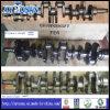 Kurbelwelle für Nissans Fe6/Fd6/Yd25/RF8/Z24/Ka24/PF6