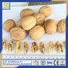 Noot, Okkernoot, de Pit van de Okkernoot, het Vlees van de Okkernoot, Droog Fruit, 1/4, Halve Vlinder
