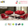 Mobilier moderne de conception simple 1+1+2+3 canapé Set (HC233)
