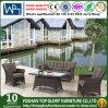 Allwetter- Aluminiumim freiengarten-Möbel-Sofa eingestellt (TG-2135)