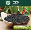 Il carbonio di Kingeta ha basato il fertilizzante composto NPK 22-7-11 per la verdura