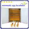 Hhd 4114 яичка инкубатора яичка цыпленка больших емкости яичек автоматических