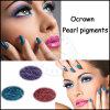 Matte naturelles de l'oeil nu d'ombre ombre à paupières paillettes Pigment maquillage