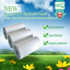 Adhesive coil Roll Steel Labels, Fart Label with Art Paper