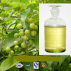 Natural Weeping Forsythia Extracto de 10: 1, 0,5% -2,0% Phillyrin;