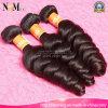 브라질 Remy 머리 길쌈/여왕 아름다움 머리 (QB-BVRH-LW)