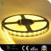 Indicatore luminoso di striscia flessibile di CC 24V LED per la decorazione della costruzione