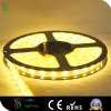 DC 24V建物の装飾のための適用範囲が広いLEDの滑走路端燈