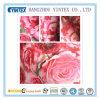 полиэфир 100% 56  Handmade&Knitted Fabeic напечатанное Y/Dtaffeta, 75D*75D/160*94