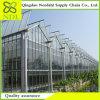 تكلفة عاصية من دفيئة زراعيّة بلاستيكيّة يجعل في الصين