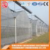 China-Plastikgewächshaus mit Kühlsystem
