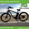 2017 Venta caliente grasa nieve bicicleta eléctrica europea