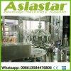 Spitzenautomatisches Saft-Flaschenabfüllmaschine-Einfüllstutzen-Standardverpackungsfließband