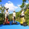 Самокат баланса 2 колес электрический, Bike Ecorider раговорного жанра электрический