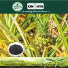 Kingeta registra il fertilizzante organico biologico basato carbonio del terreno pH