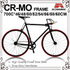 700c Paint Decal 크롬 Mo Fixed Gear Bicycle (KB-700C23)