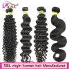 Верхние волосы Peruvian Weave волос девственницы Xbl ранга