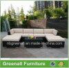 Rota al aire libre/muebles de mimbre del ocio del jardín del sofá