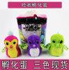 Cadeau créateur de Pengualas de Hatchimals d'oeufs à couver de gosses interactifs électroniques de jouets