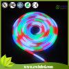 Holiday Lighting를 위한 다채로운 LED Neon Flex