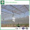 농업 설치를 위한 다중 경간 PC 장 온실