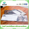 Fancy Paper Offset Printing Booklet / Brochure (pour l'introduction)