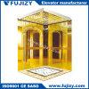Establo que ejecuta la elevación del elevador de 3 suelos para el hotel con Canbin de oro