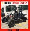 Le boguet 3000W électrique neuf vont Kart à vendre (MC-259)