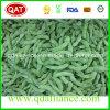 Aucun OGM Soja surgelés IQF avec certification BRC HACCP