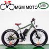 26' Fat Tire Grand Vélo électrique 500W de puissance