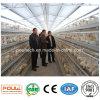 Cage Breeding de couche de batterie de machines de ferme de poulet automatique