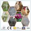 Acoplamiento de alambre/tela metálica/acoplamiento de alambre hexagonales galvanizados de pollo