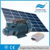 Zhejiang는 200W와 300W 태양 전지판을%s 가진 24V 36V 지상수 펌프를 갈채를 보낸다