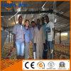 自由なデザイン鋼鉄家禽の小屋が付いている工場養鶏場の機械装置