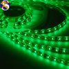 IP65 illuminazione di striscia flessibile di colore verde SMD LED 3528-60LEDs