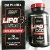 Starker wirkungsvoller Kräuterauszug-Gewicht-Großhandelsverlust, der Pille-Kapsel abnimmt