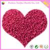 Красное Masterbatch для продукта пластмассы HDPE