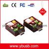 栄養物のBento箱USB (YB-172)