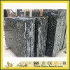 De grijze Zeeschelpen bloeien Marmeren Plak Tile& (de Tegel van de yY-Overzeese Shell Bloem)