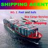 Agente de Expedição/Yiwu Mar logística de carga e de frete aéreo Agente Marítimo (YAGENT02)