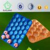 изготовленный на заказ<br/> пластиковых одноразовых свежие фрукты Alveolos отображения лотка для бумаги