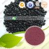 Zwarte Anthocyanin 10%-40% van het Uittreksel van de Boon Goede Kwaliteit