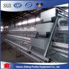 Cages de poulet fabriquées en Chine avec la bonne qualité