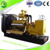 Lvneng Independent Entwickel Internal Combustion 10-1000kw LPG Generator Set