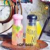 700ml comerciano la bottiglia all'ingrosso di plastica libera di infusione della frutta di BPA Tritan (HDP-0480)