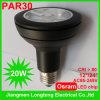 Osram Chip 20W PAR Light (Lt.-SP-par30-g-20W)