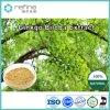 100% 자연적인 은행나무 Biloba 추출. 24%Flavones/6%Terpene 락톤